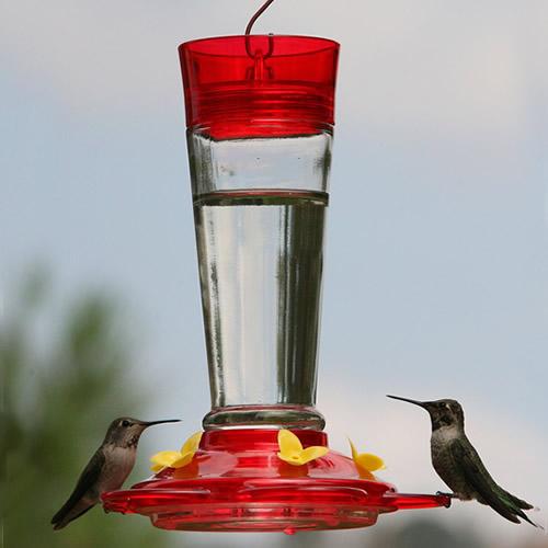 Classic Ruby Hummingbird Feeder