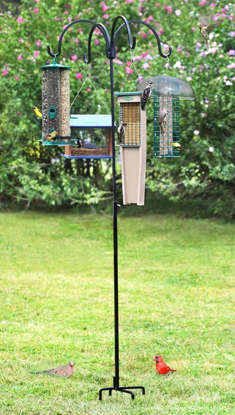 Quad Bird Feeder Hanger