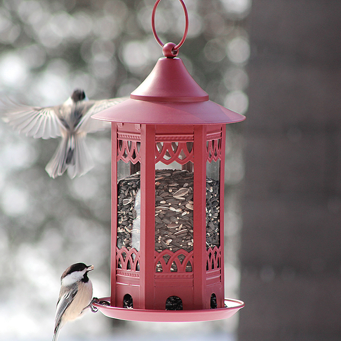 Hanging Red Decorative Seed Feeder