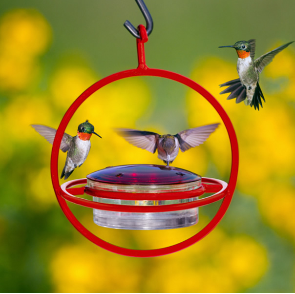 sweety lil com ultra ac red garden feeder amazon feeders ounce hummingbird aspects dp hummzinger hanging