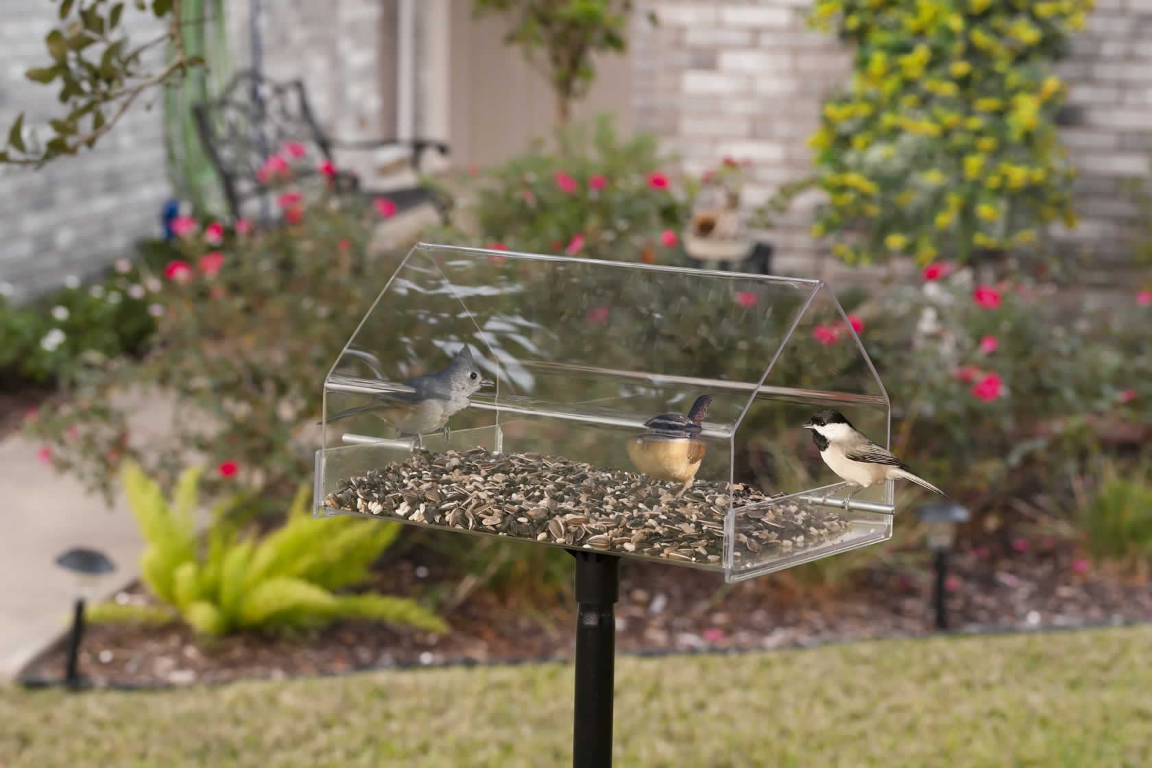 you ll feeders love wayfair mounted pole feeder platform outdoor bird tray
