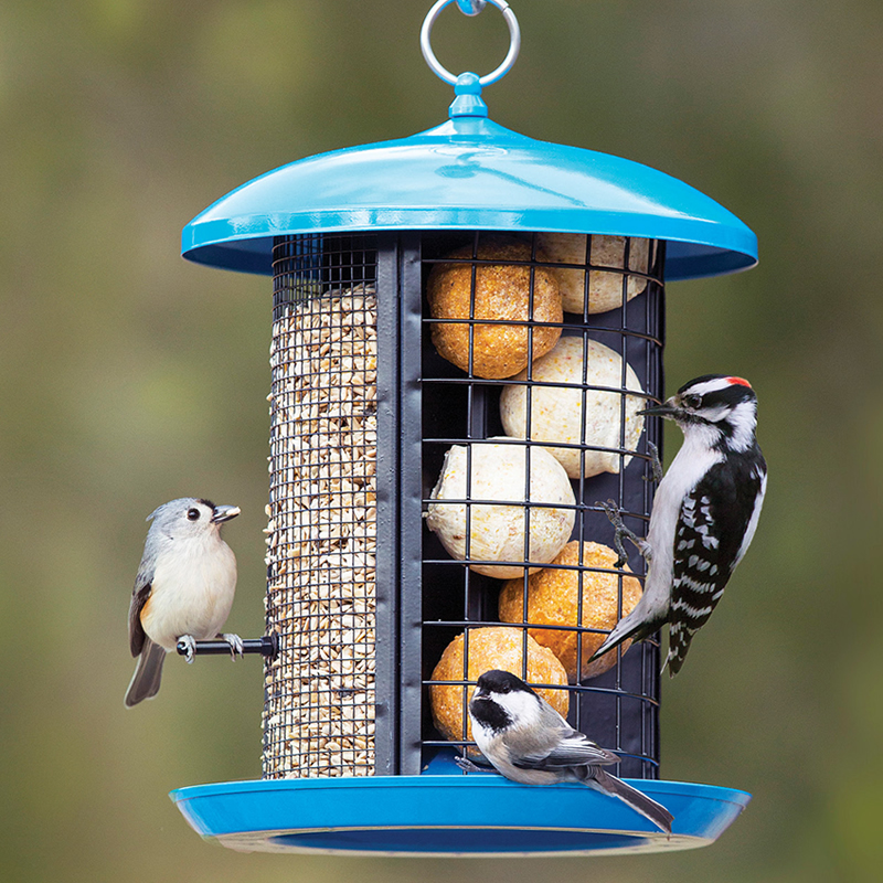 of feeder nf products pkts zoom pid set home mix food forever nature bird