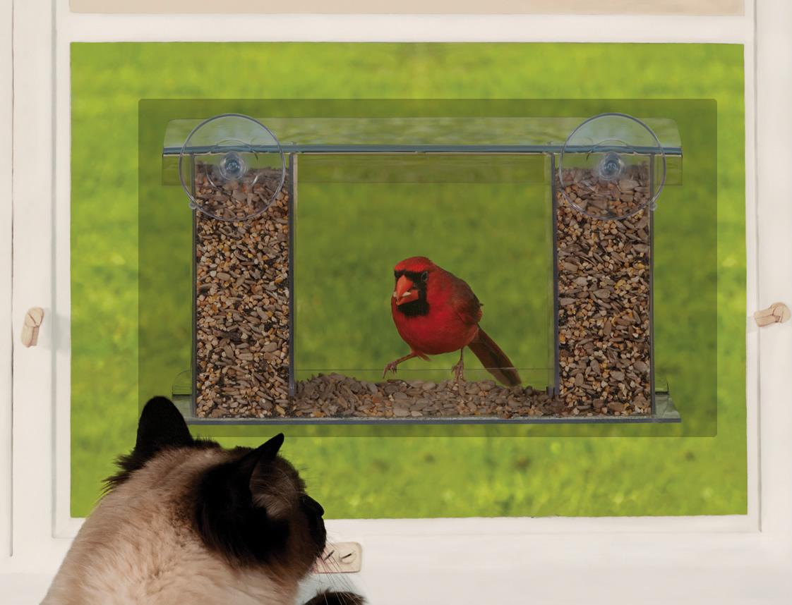 Duncraft Com Duncraft Songbird Mirrored Window Bird Feeder