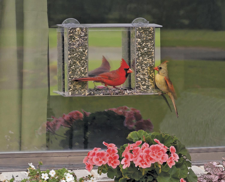 Mirror window bird feeder - Super Songbird Mirrored Feeder