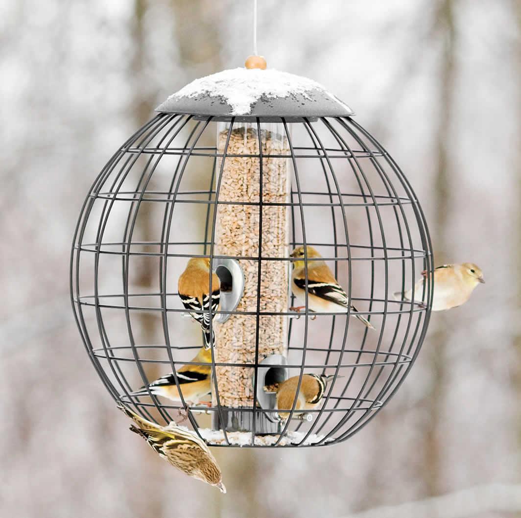 Duncraft.com: Gardman Squirrel Proof Seed Globe