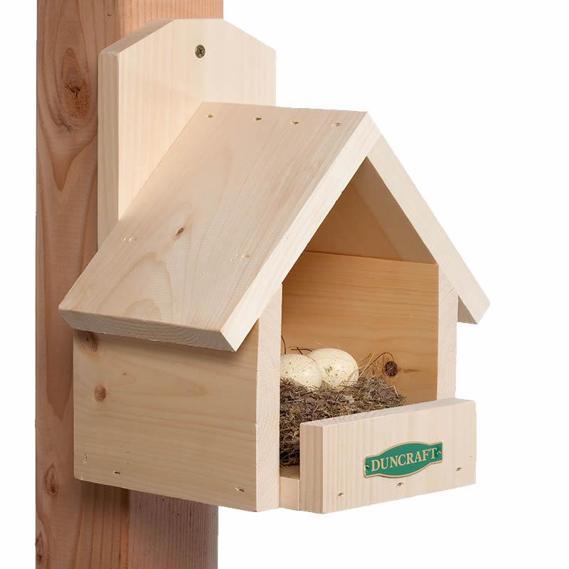Amazing Duncraft Cardinal Bird House