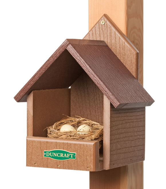 Duncraft 3021 eco friendly cardinal bird house for Song bird house plans