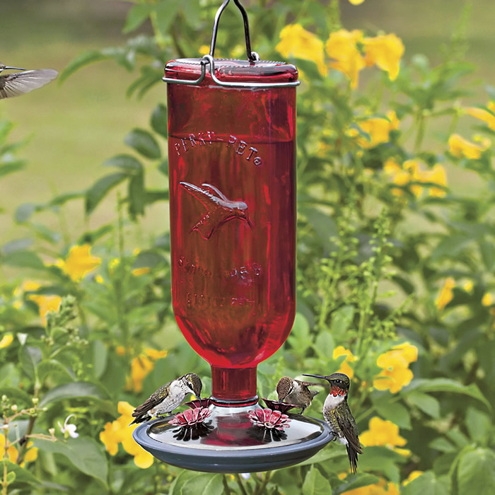 yellow red feeders we products swirl sale love feeder glass hummingbirds for hummingbird painted
