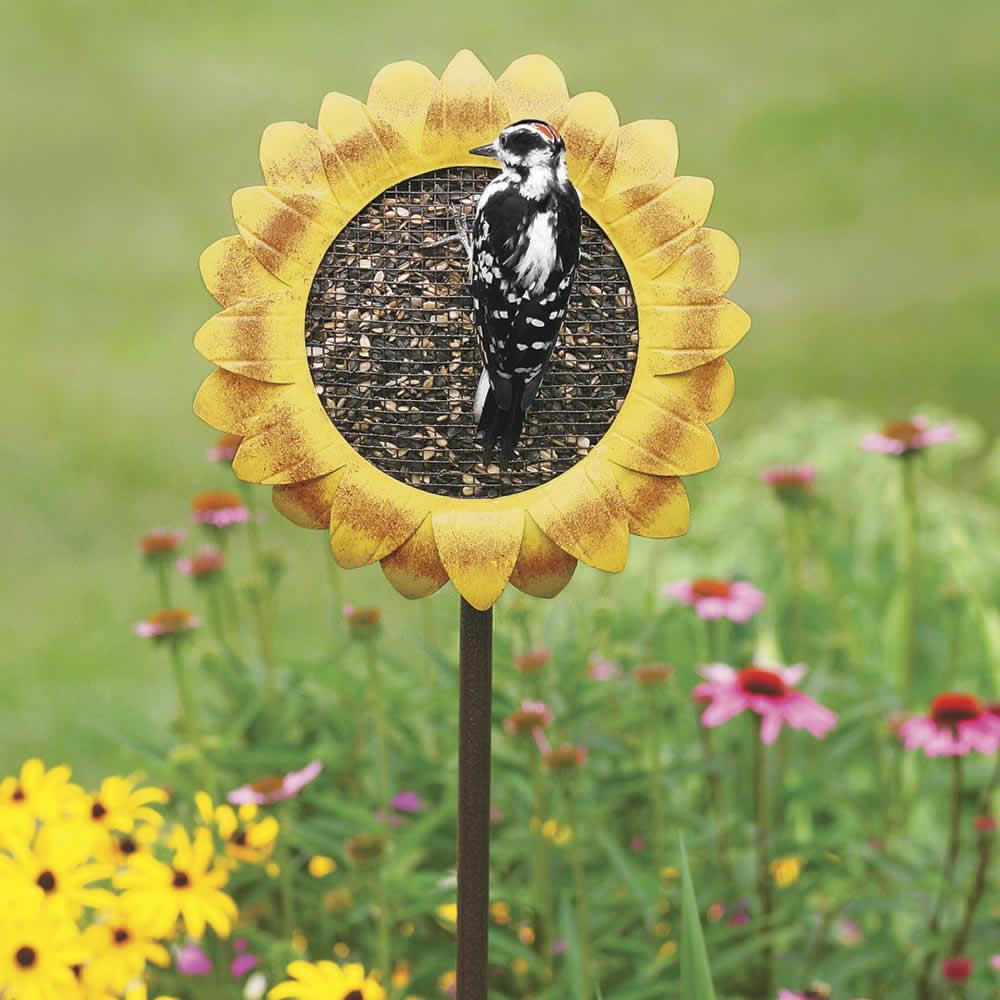 Duncraft Com Sunflower Staked Bird Feeder