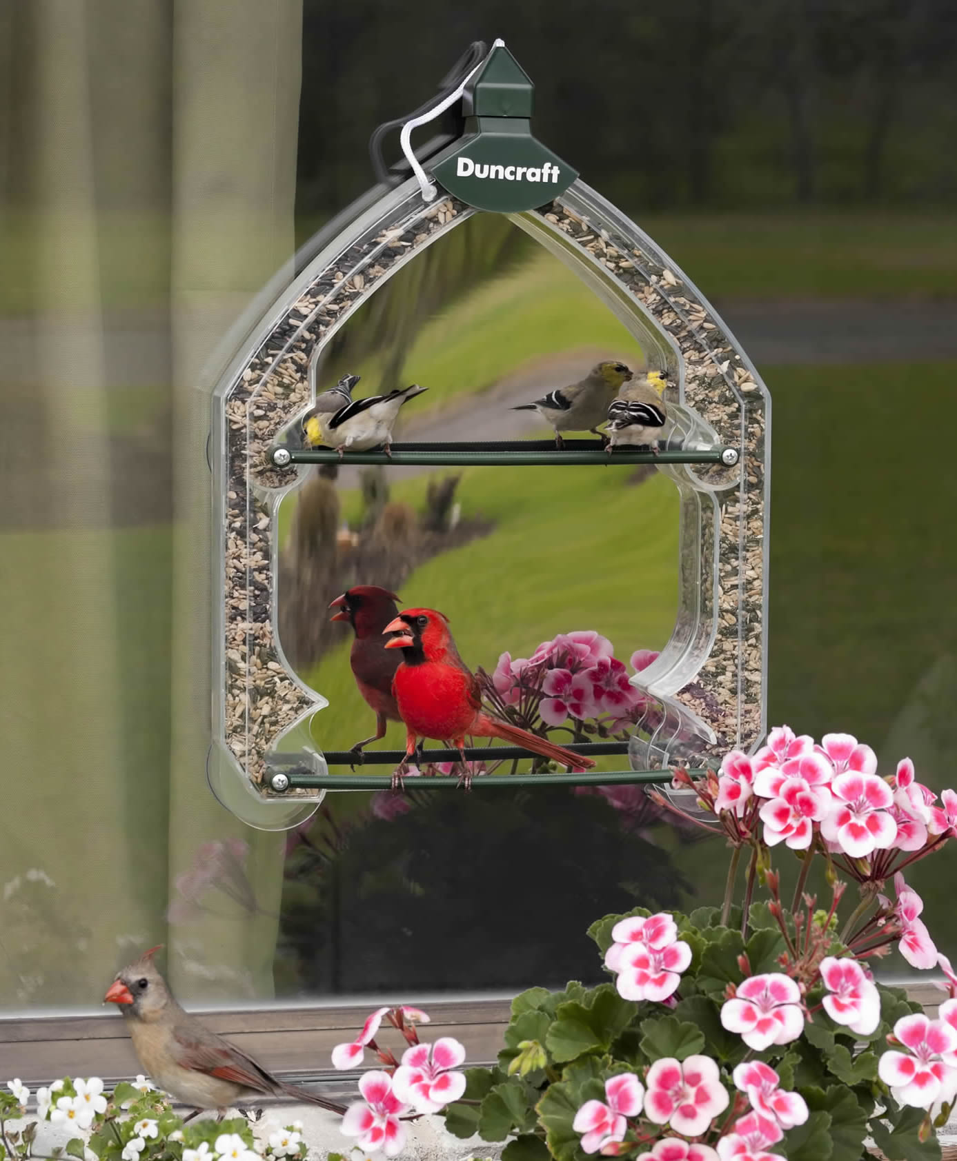 Duncraft Magic Mirrored Window Feeder