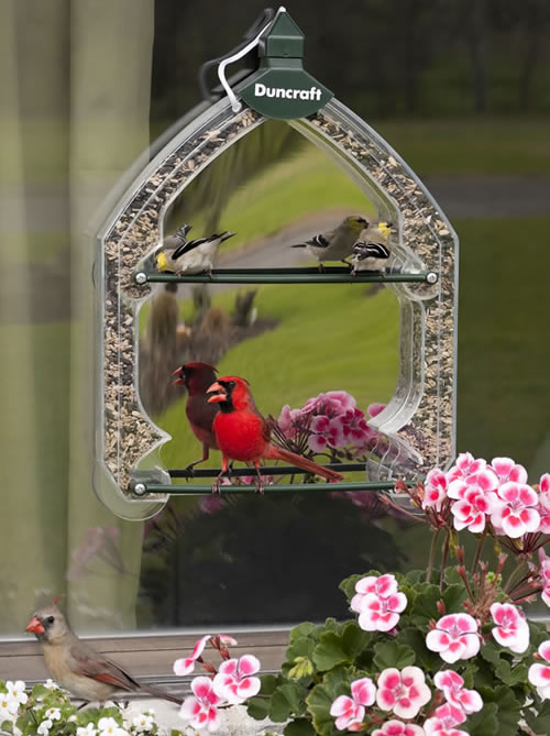 Duncraft Magic Mirrored Window Feeder
