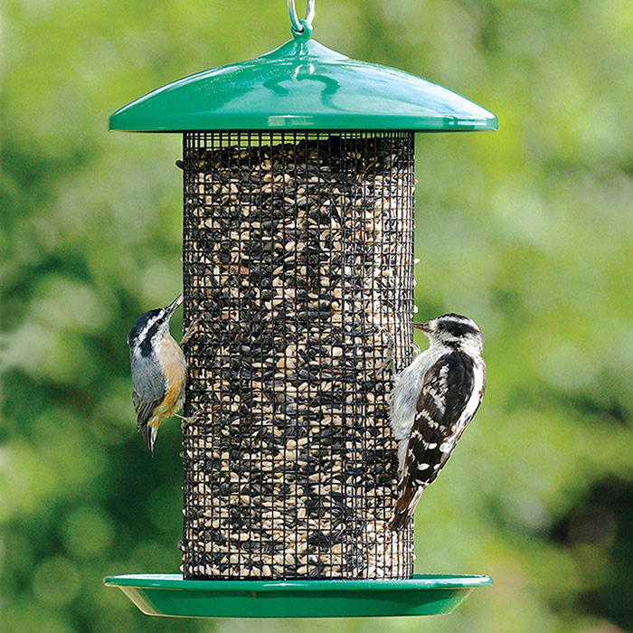 centre bird poplar garden feeders marks tey food feeder birdcare nurseries
