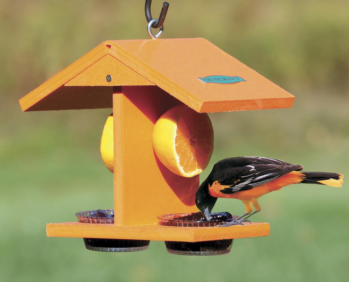 hand on of feeder painted oriole deluxe walmart pinterest perky feeders new pet best images capacity