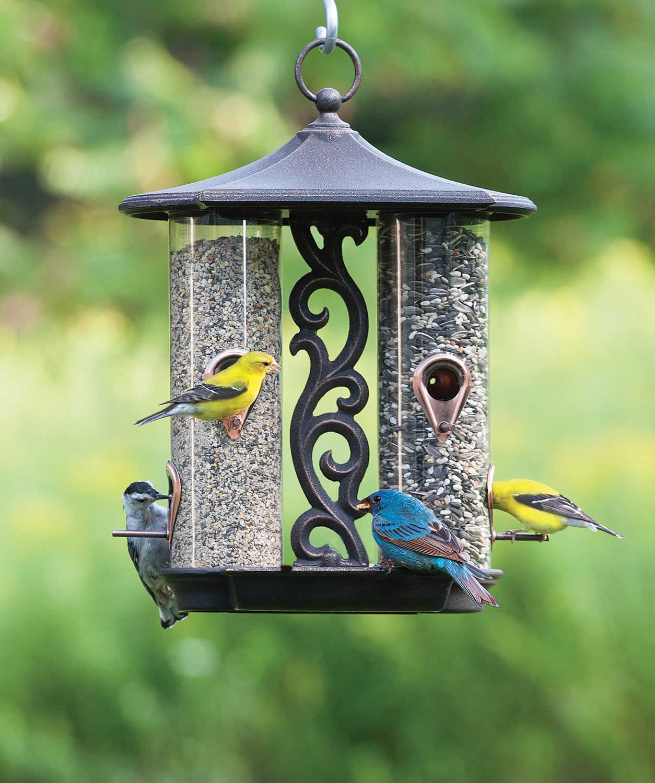 Twin Bird Feeder