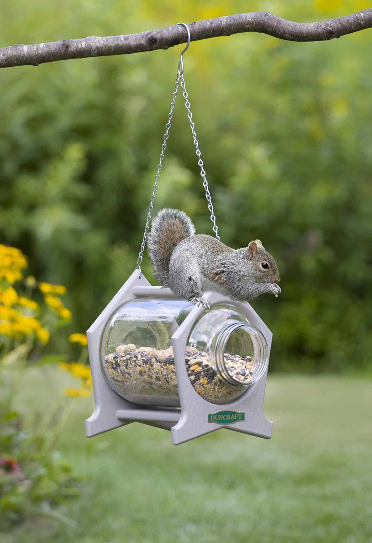 Duncraft Com Hanging Squirrel Jar