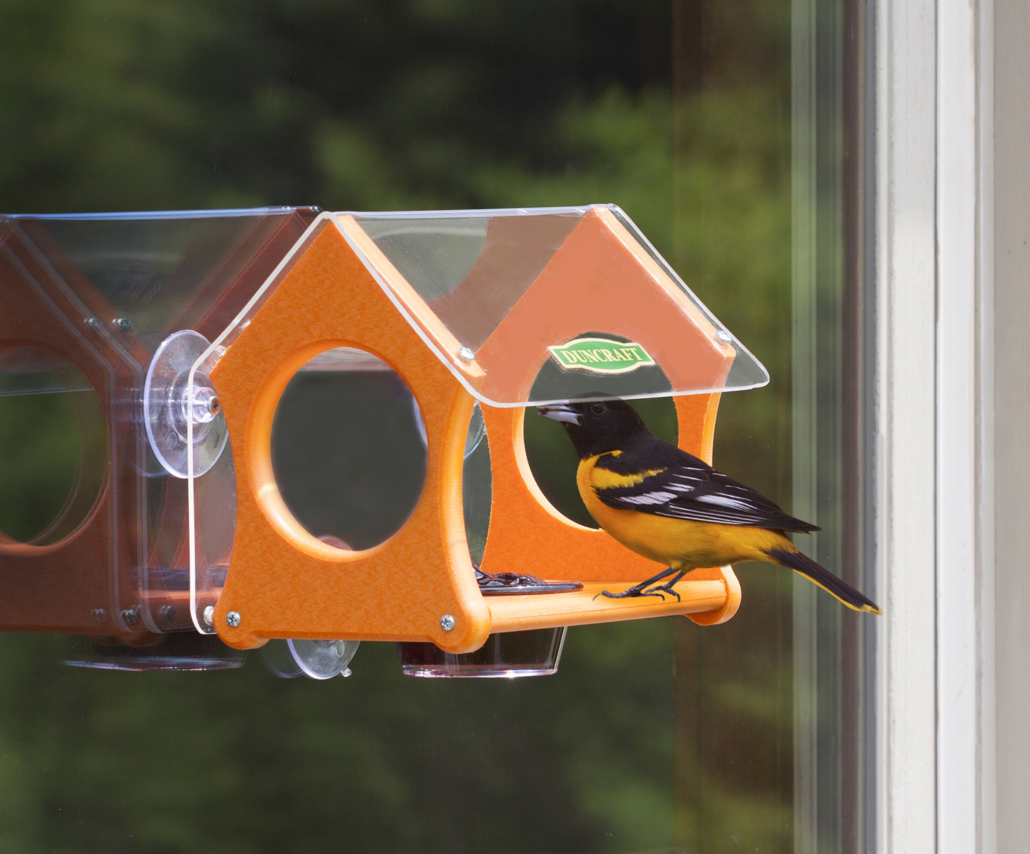 Window bird house - Oriole Window Jelly Bird Feeder