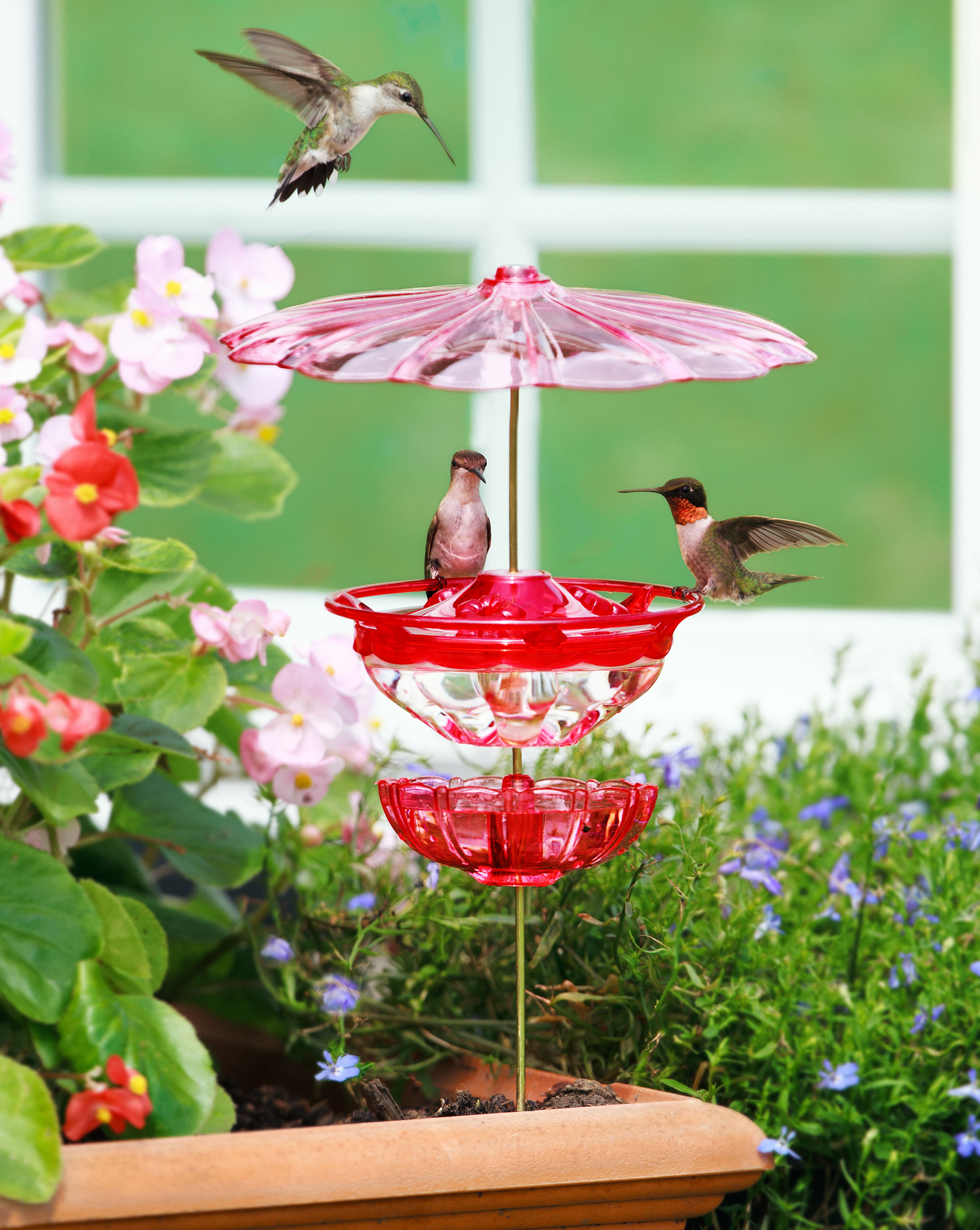 valley com cherry model mounted coach lamp garden pole outdoor feeders dp amazon pet bird feeder