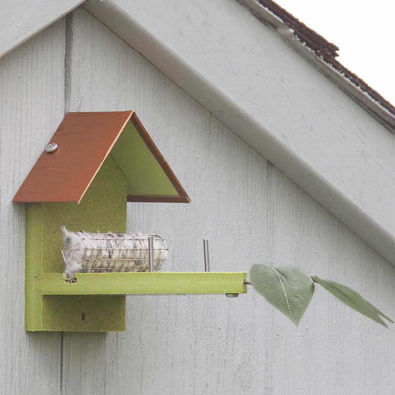 Hummingbird Houses