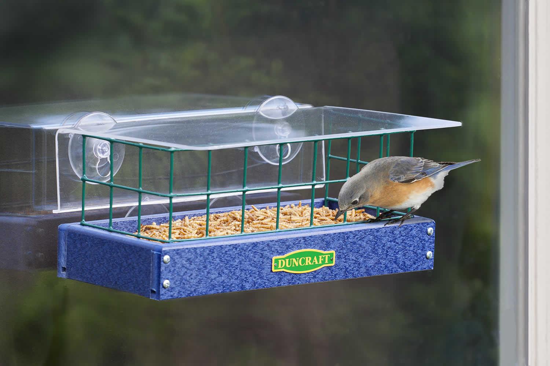 Mirror window bird feeder - Bluebird Window Haven Feeder