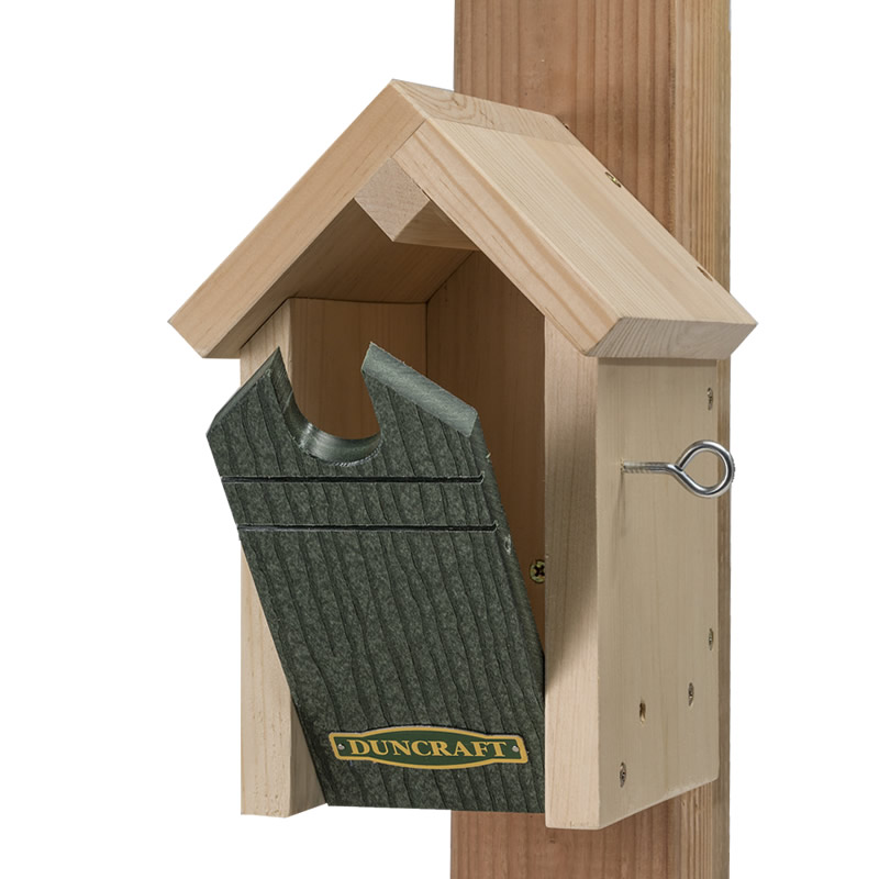 Cómo detener las aves de construir nidos de barro en mi porche delantero