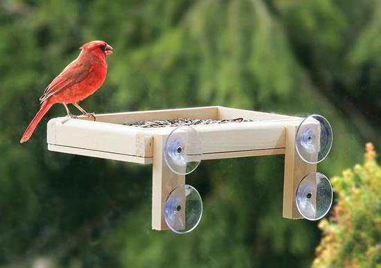 duncraft platform window feeder
