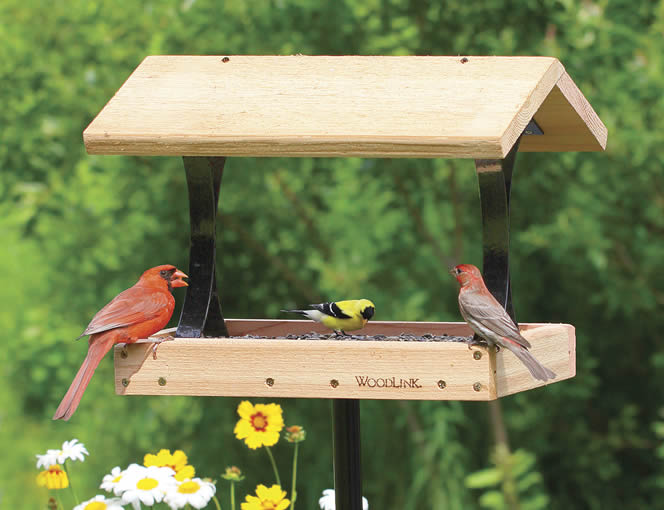 Platform Bird Feeder With Roof Plans