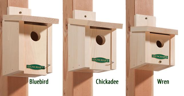 Beautiful Cardinal Bird House Plans Images - 3D house designs ...
