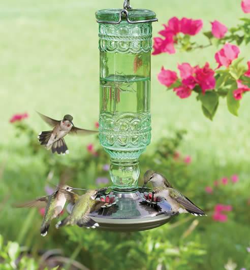 Duncraft Com Antique Glass Hummingbird Feeder