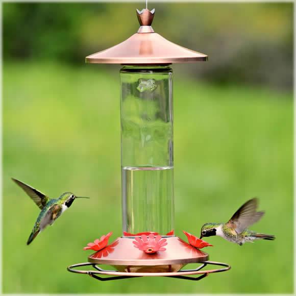 Duncraft Com Birdscapes 174 Brushed Metal Hummingbird Feeder