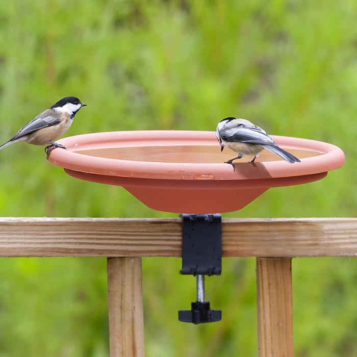 Gentil Deck Mount Bird Bath