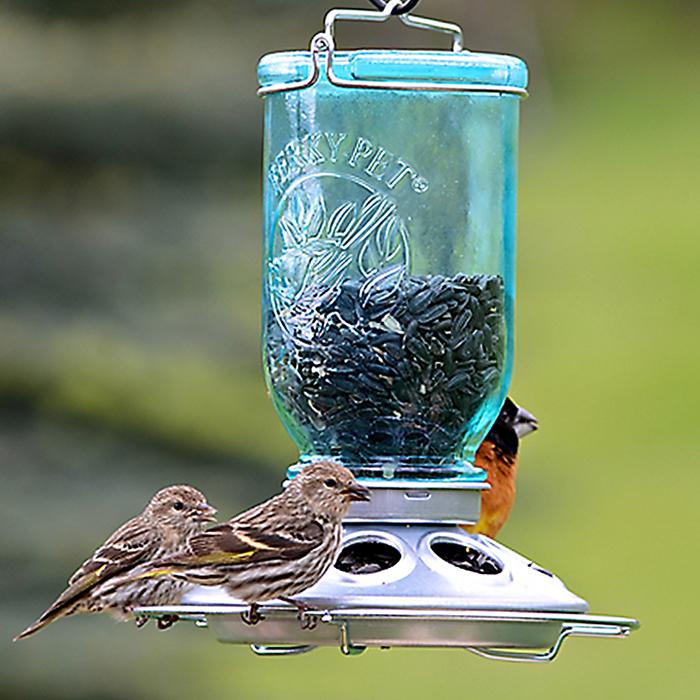 wild stands feeder bottom product brooklands bird