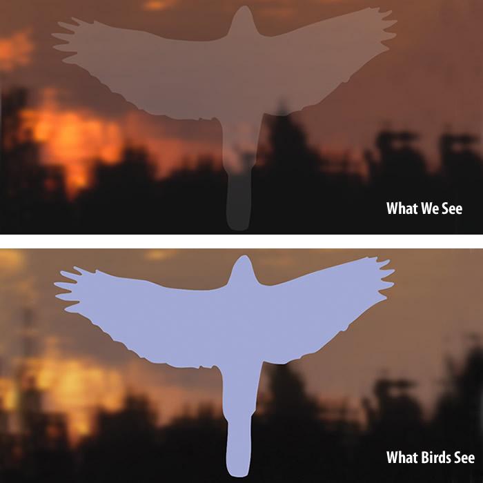 Duncraftcom Duncraft Bird Safe Hawk Window Strike Decals - Window decals for birds strikes