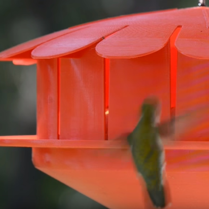 Humm-Bug Hummingbird Protein Feeder