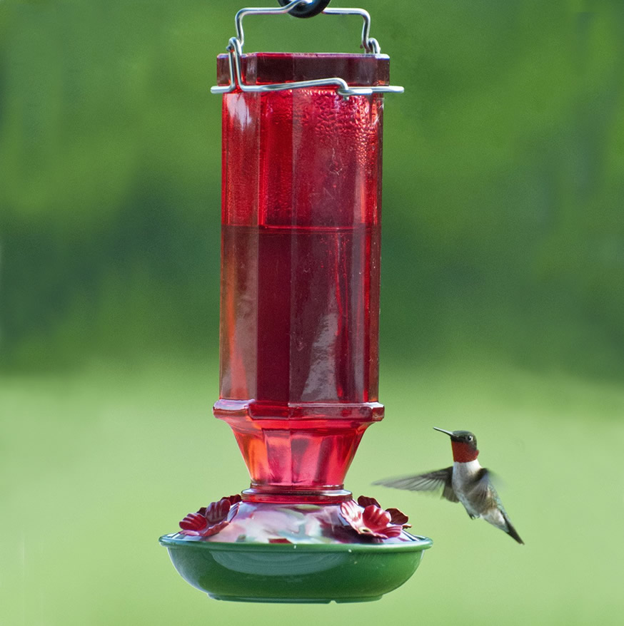 glass for sale com feeder feeders clear antique hummingbird duncraft zoom