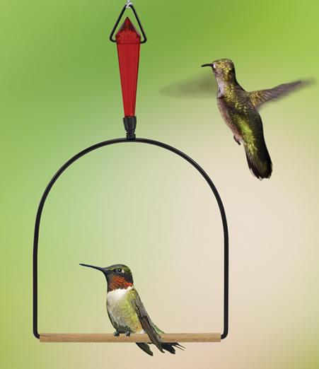 Duncraft Com Jeweled Hummingbird Swing