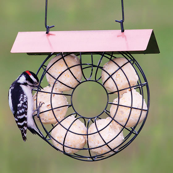Image result for suet ball feeders
