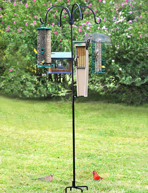 Adjustable Quad Bird Feeder Hanger