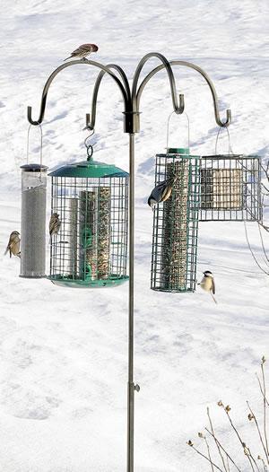 Quad Birdfeeder Hanger