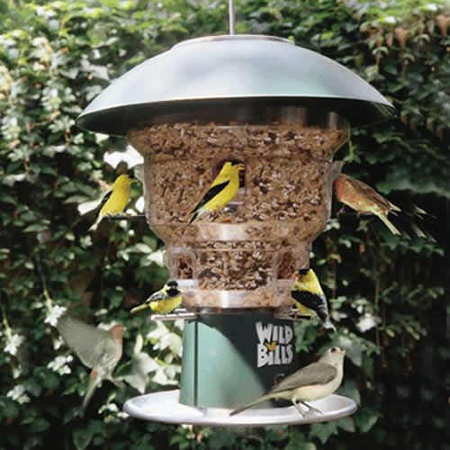 Wildbill's Feeder
