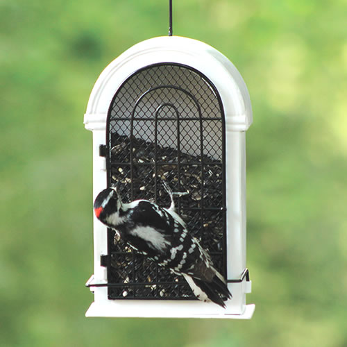 Romanesque Window Frame Style Feeder