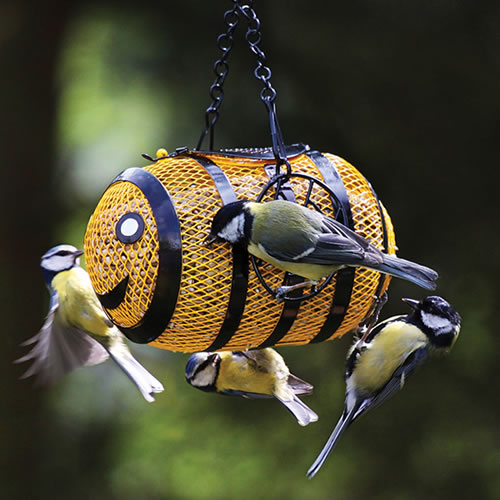 Bumble Bee Fun Sunflower Feeder