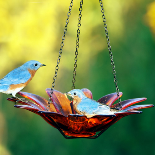 12- Hanging Glass Daisy Bird Bath - Orange