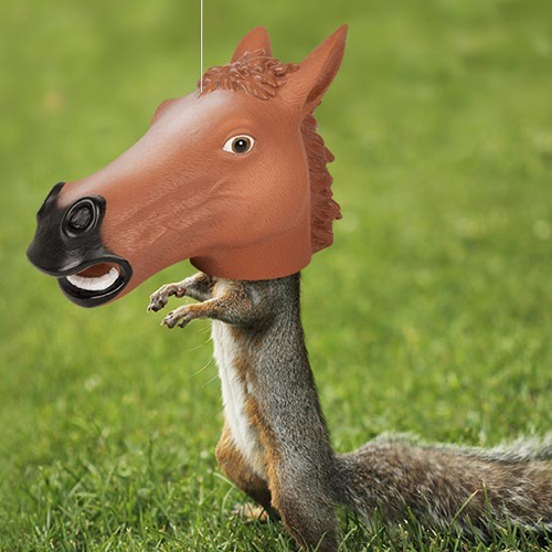 Big Horse Head Squirrel Feeder