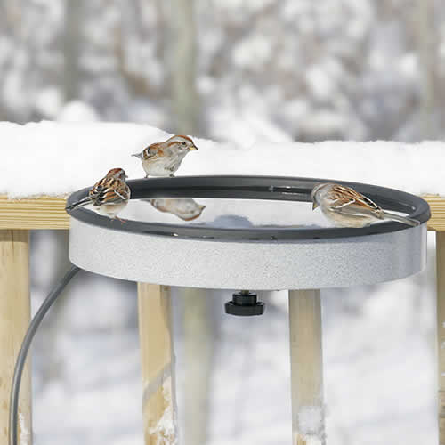 Heated Deck Bird Bath