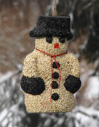 Mr Birdseed Snowman