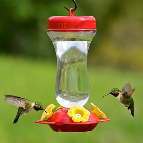 16 oz. Top Fill Hummer Feeder