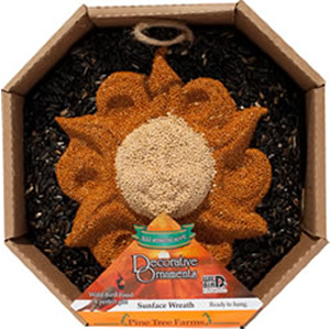 Sun Face Seed Wreath