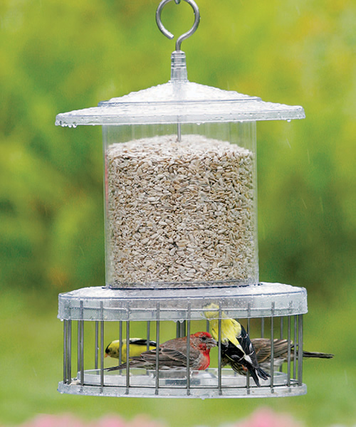 All Weather Feeder with Wire Cage