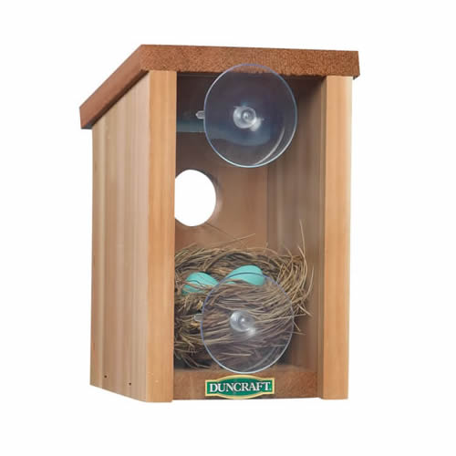 Duncraft Window View Bird House (1558) photo
