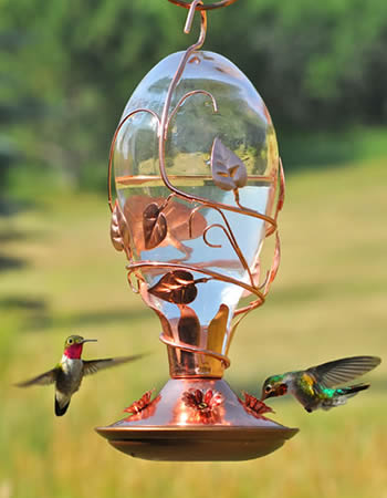 Looking Glass Hummer Feeder